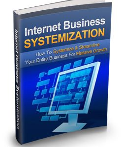 005 – Internet Business Systemization PLR