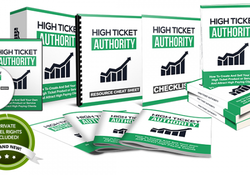 057 – High Ticket Authority PLR