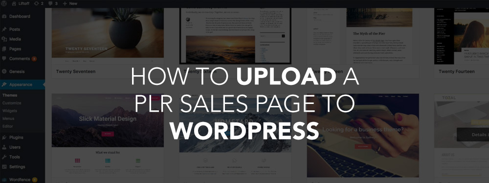 How To Upload A PLR Sales Page To WordPress