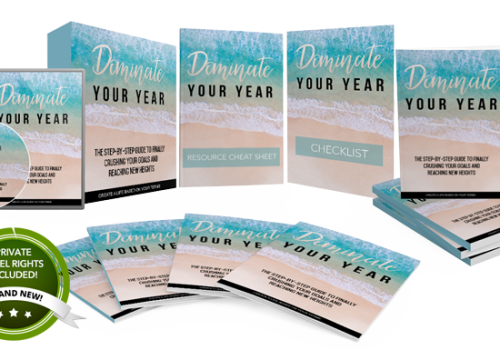 095 – Dominate Your Year PLR