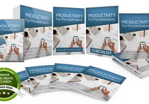 119 – Productivity For Procrastinators PLR