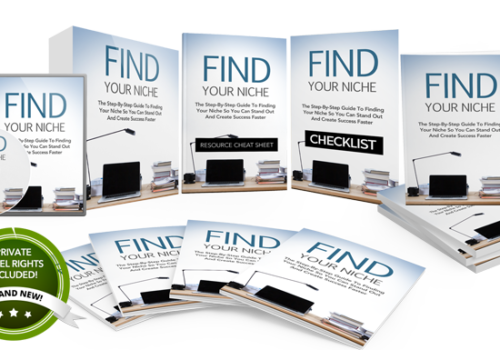 128 – Find Your Niche PLR