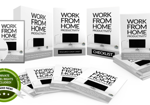 144 – Work-From-Home Productivity PLR