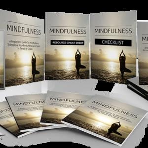 159 – Mindfulness PLR